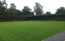A re-seeded lawn at Kettleby Nr Brigg. ( 4 weeks from seeding date)