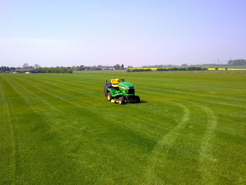 First cut Spring 2011