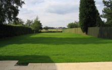 A new Domestic Lawn - Humberston Avenue, Grimsby. After first cut 6 weeks from seeding date