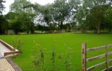 June 2012, A seeded lawn for a new build home at Market Rasen, 3 weeks from seeding date and already well established